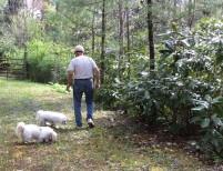 Jim & dogs 1